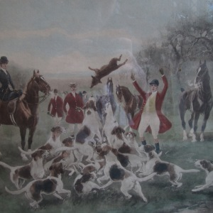 "Oak Framed Hunting Lithographs, hand coloured ft. ""Badly Beaten"" & ""Who Whoop"" c.1900"
